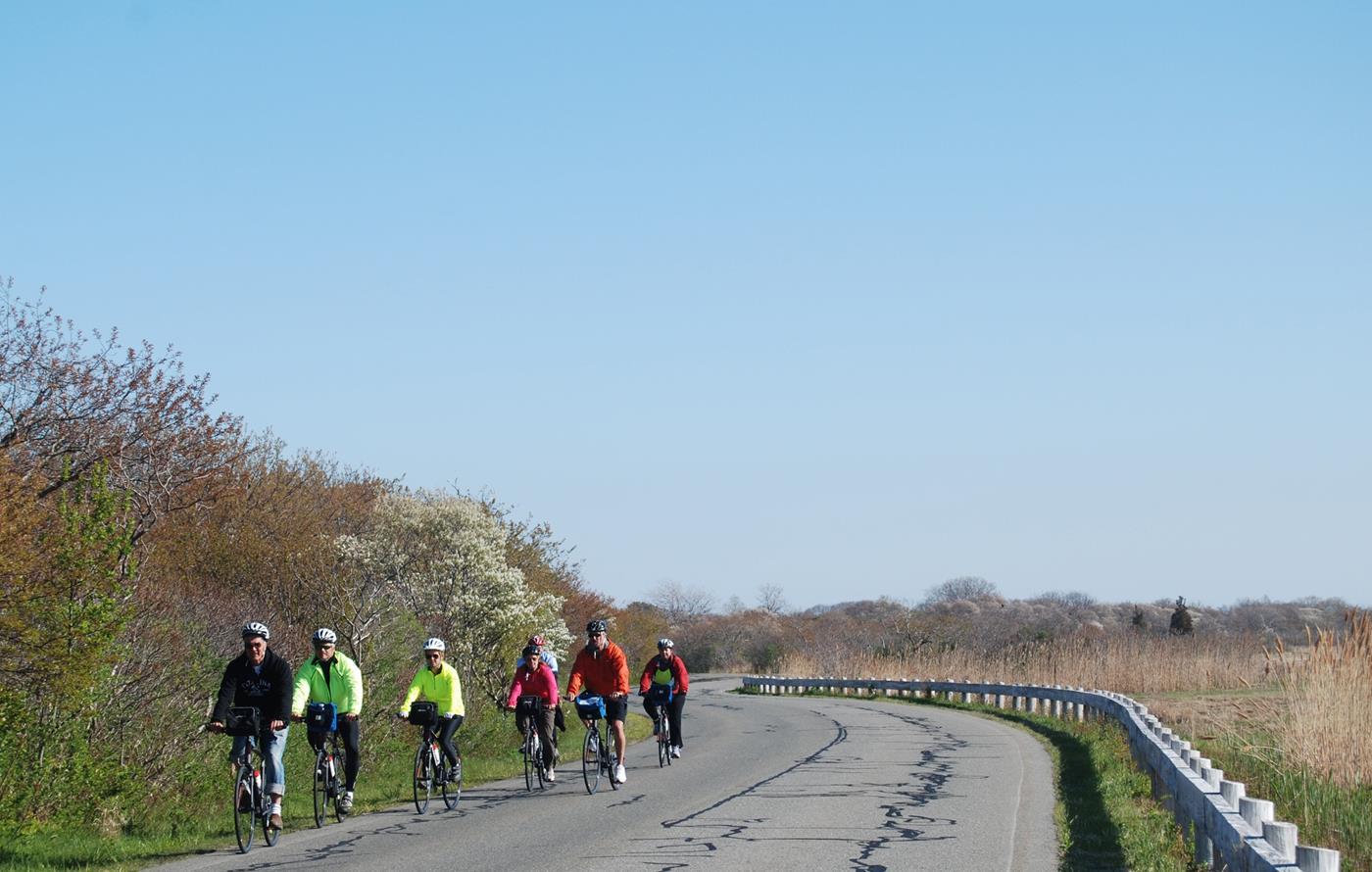 easy bike tours