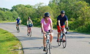 eco-bike-adventure-great-freedom-adventures