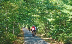 marthas-vineyard-biking