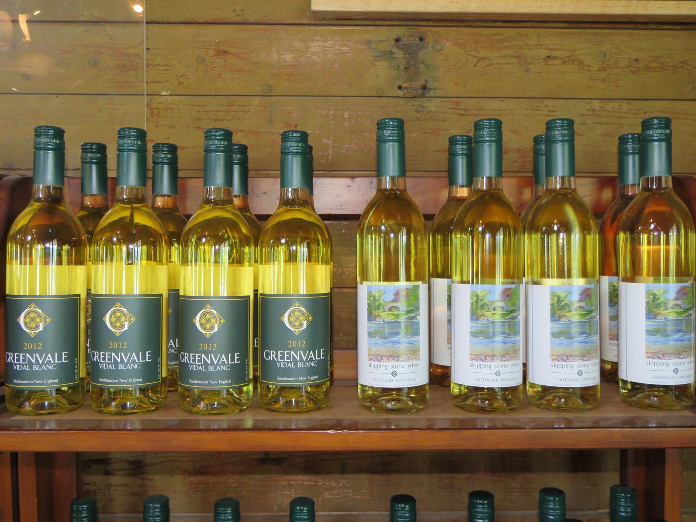 wine bike tour 5