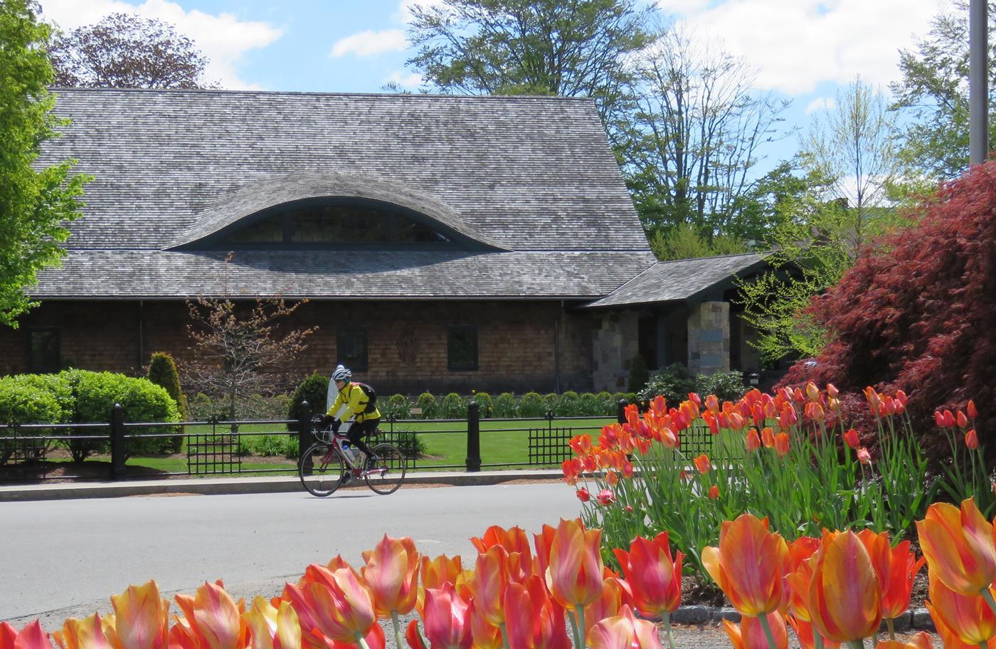 wine trail bike tour